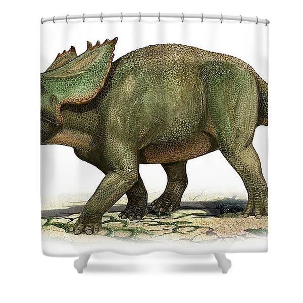 Utahceratops Gettyi, A Prehistoric Era Shower Curtain by Sergey Krasovskiy