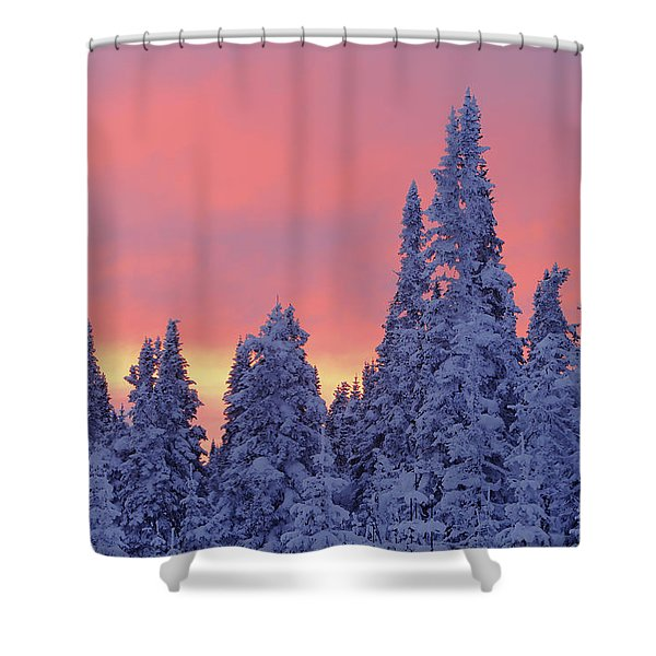 View Of Snow-covered Trees And Sky Shower Curtain by Yves Marcoux