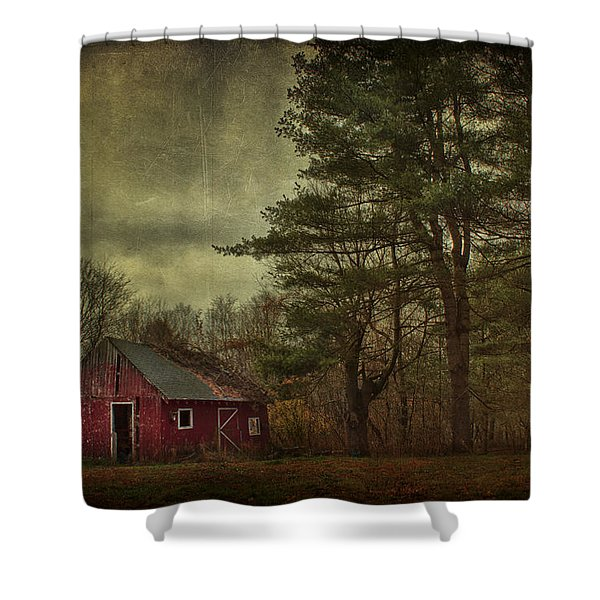 Watching Over me Shower Curtain by Evelina Kremsdorf