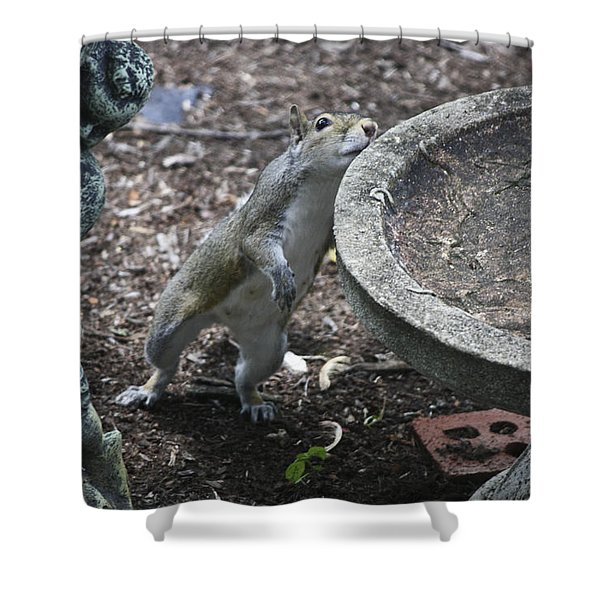 Whadaya Mean There Is No Water Shower Curtain by Teresa Mucha