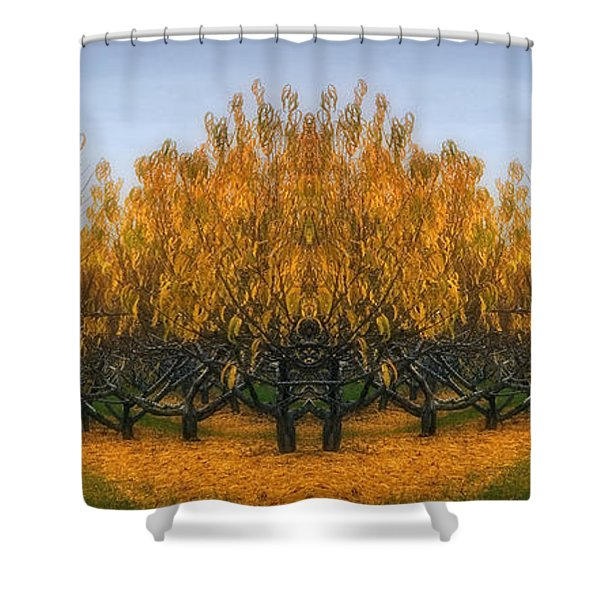 Which Way Shower Curtain by Susan Candelario