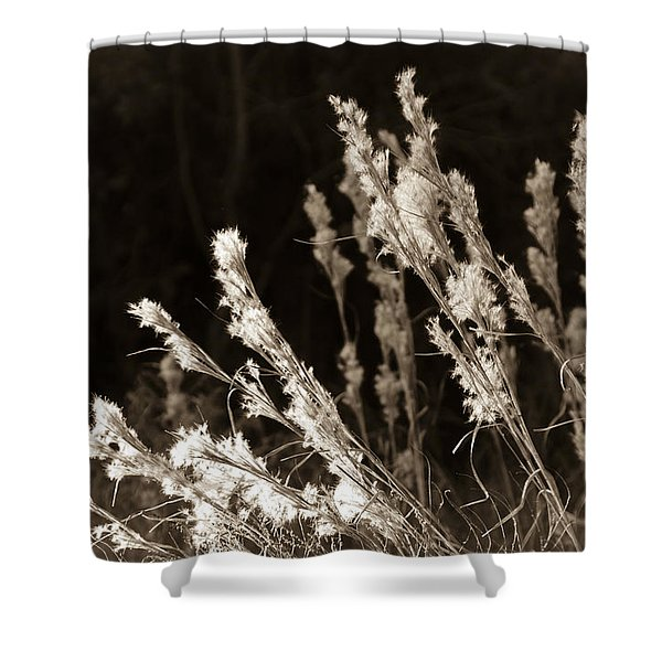 Whisper Gently Shower Curtain by Carolyn Marshall