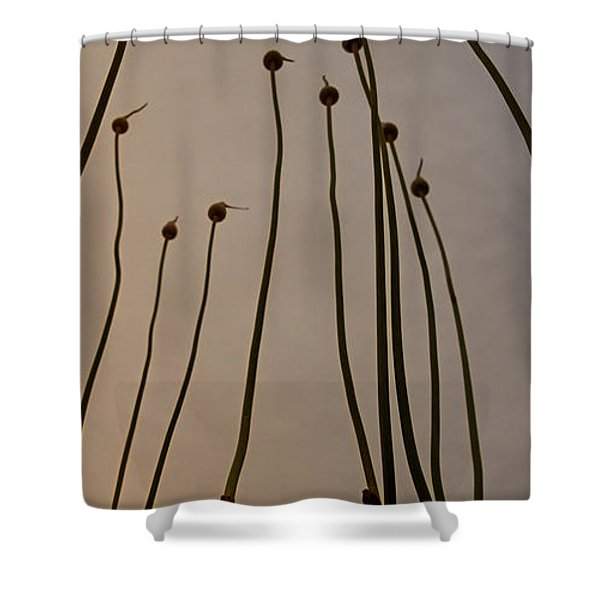 Wild Onions Shower Curtain by Stylianos Kleanthous