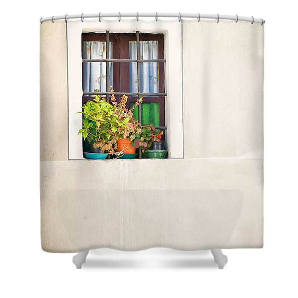 Window With White Frame And Vases Shower Curtain by Silvia Ganora