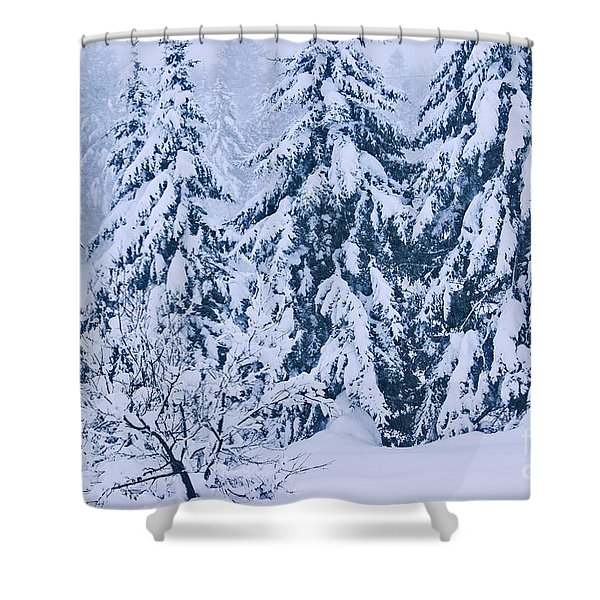 Winter Coat Shower Curtain by Aimelle