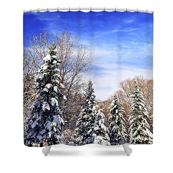 Winter forest under snow Shower Curtain by Elena Elisseeva