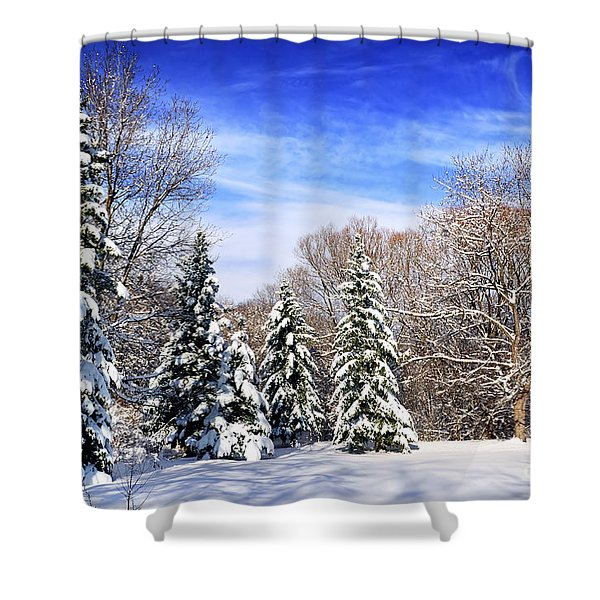 Winter forest with snow Shower Curtain by Elena Elisseeva