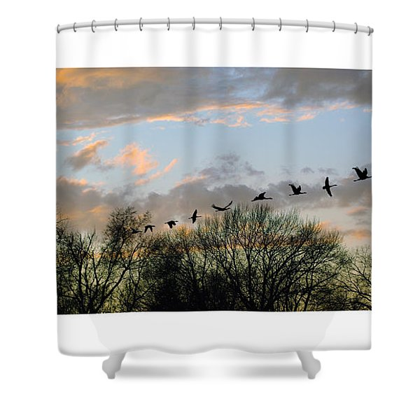 Winter Sunset  Silhouette Shower Curtain by Brian Wallace