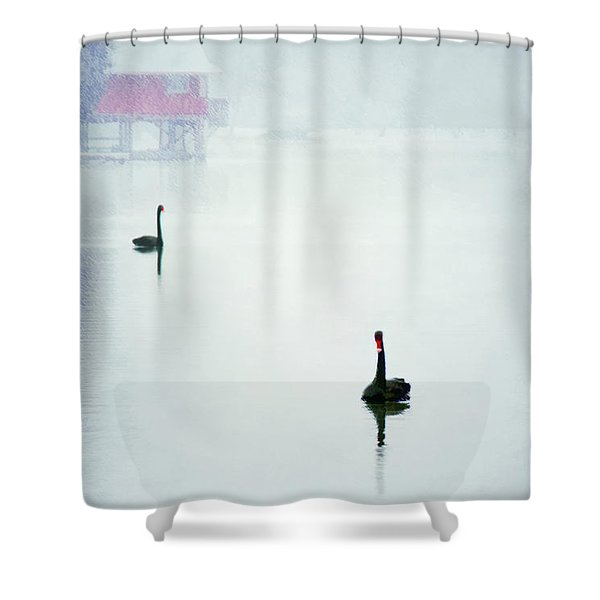 Winter Swans Shower Curtain by Darren Fisher