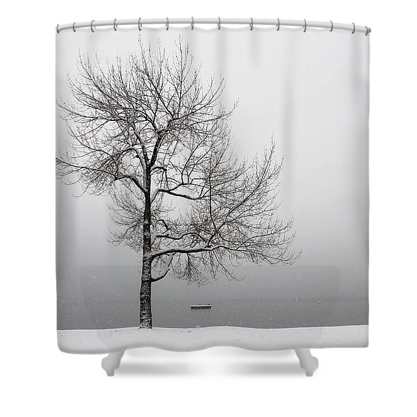 wintertrees Shower Curtain by Joana Kruse