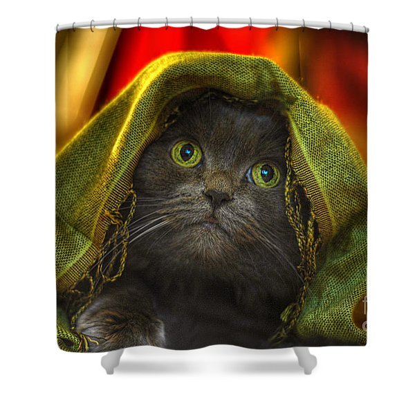 Wonder Shower Curtain by Joann Vitali