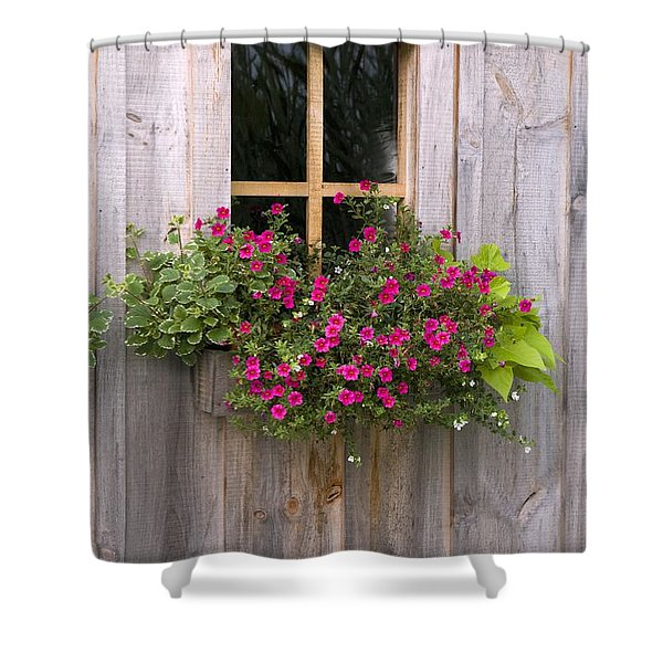 Wooden Shed With A Flower Box Under The Shower Curtain by Michael Interisano