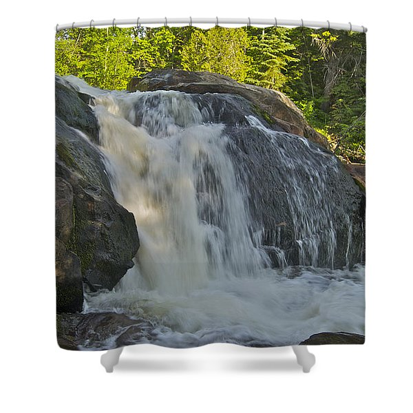 Yellow Dog Falls 4192 Shower Curtain by Michael Peychich