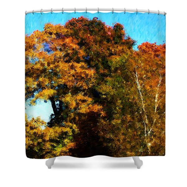 Autumn Leaves Shower Curtain by David Lane