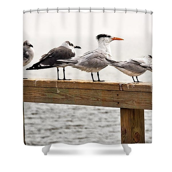 Grounded By Fog Shower Curtain by Christopher Holmes