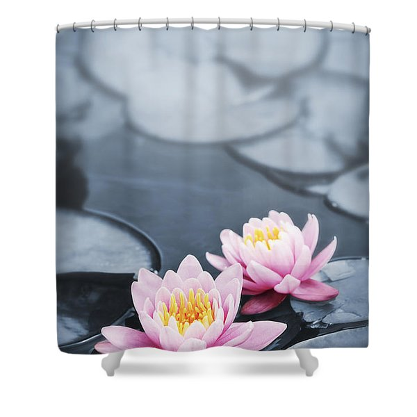 Lotus blossoms Shower Curtain by Elena Elisseeva