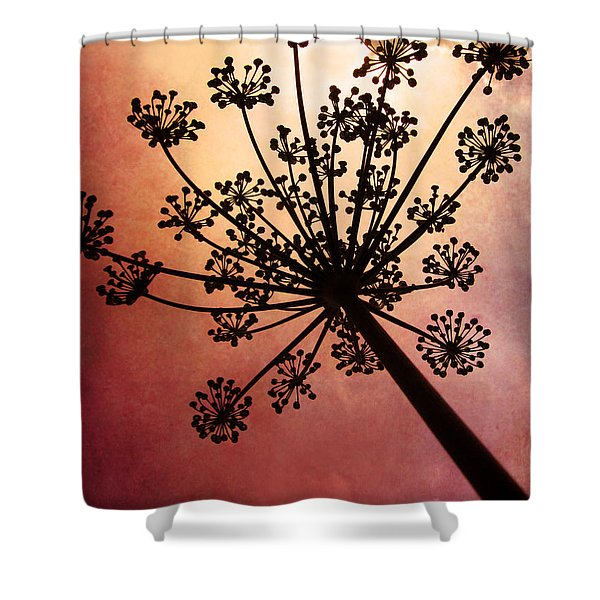 Nature's Fireworks Shower Curtain by Amy Tyler