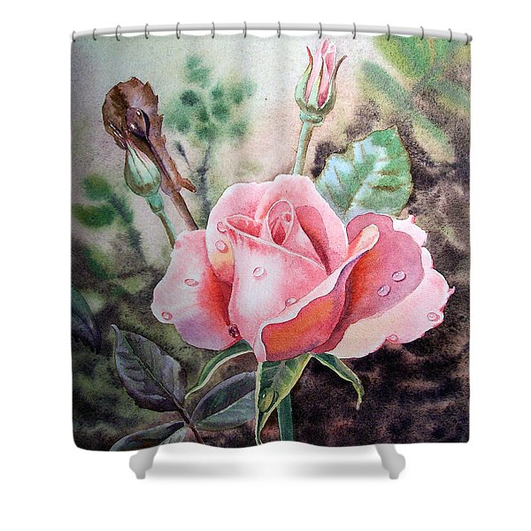 Pink Rose With Dew Drops Shower Curtain by Irina Sztukowski