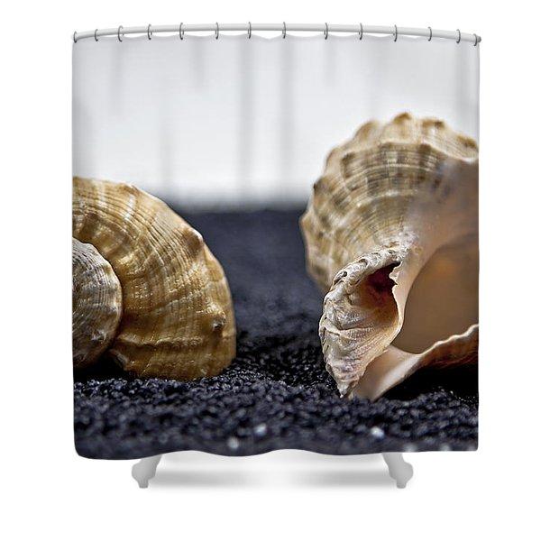 seashells on black sand Shower Curtain by Joana Kruse