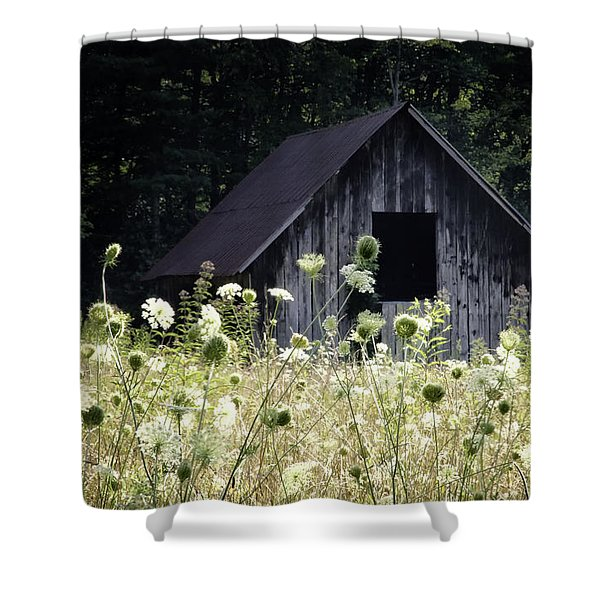 Summer Barn Shower Curtain by Rob Travis