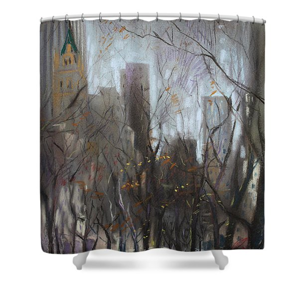 NYC Central Park Shower Curtain by Ylli Haruni