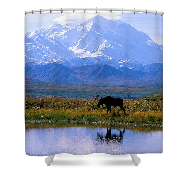 Denali National Park Shower Curtain by John Hyde - Printscapes