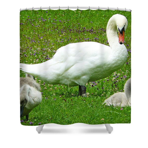 A Caring Mother Shower Curtain by Daniel Csoka
