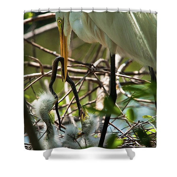 A Lively Lunch Shower Curtain by Christopher Holmes