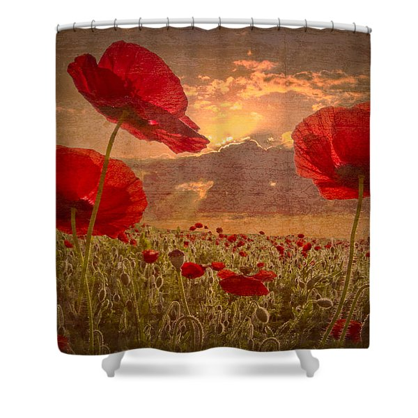 A Poppy Kind of Morning Shower Curtain by Debra and Dave Vanderlaan