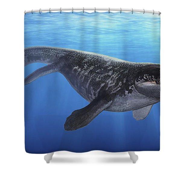 A Prognathodon Saturator Swimming Shower Curtain by Sergey Krasovskiy