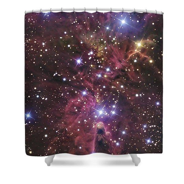 A Stellar Nursery Located Towards Shower Curtain by R Jay GaBany
