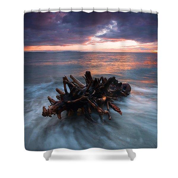 Adrift Shower Curtain by Mike  Dawson