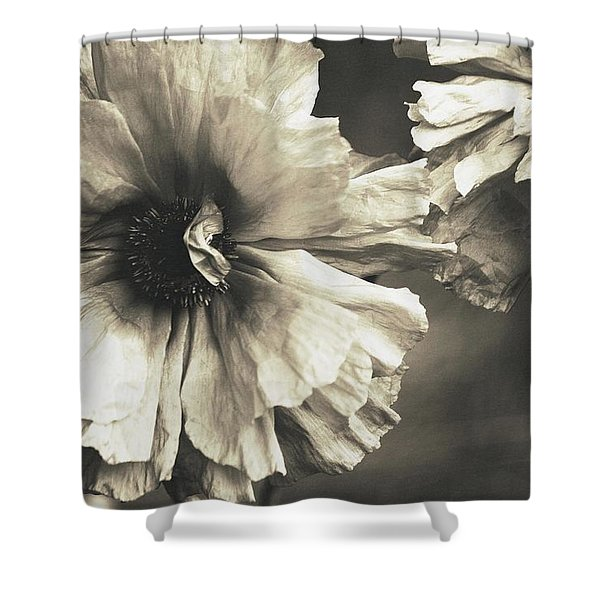 Age of Change... Shower Curtain by  The Art Of Marilyn Ridoutt-Greene