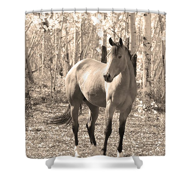 Beautiful Horse In Sepia Shower Curtain by James BO  Insogna