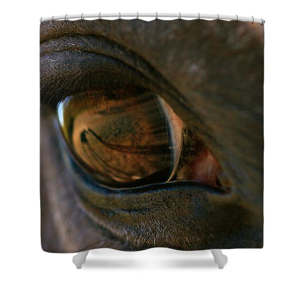 Beauty Is In the Eye of the Beholder Shower Curtain by Angela Rath
