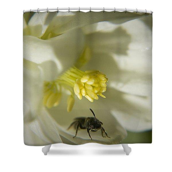 Bee Mine Shower Curtain by Teresa Mucha