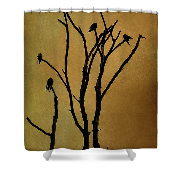 Birds In Tree Shower Curtain by Dave Gordon