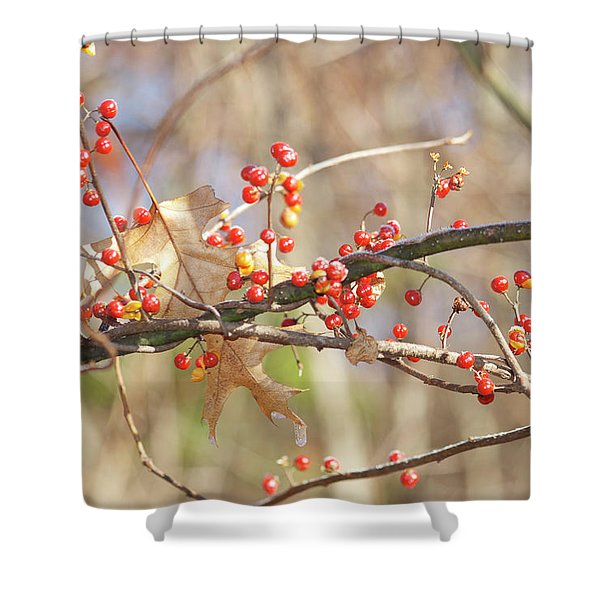 Bittersweet and Oak Shower Curtain by Michael Peychich