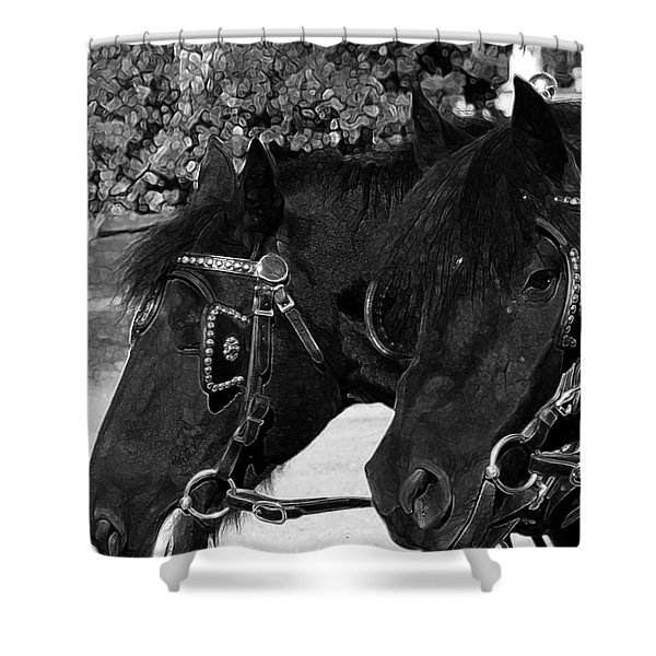 Black beauties Shower Curtain by Stuart Turnbull