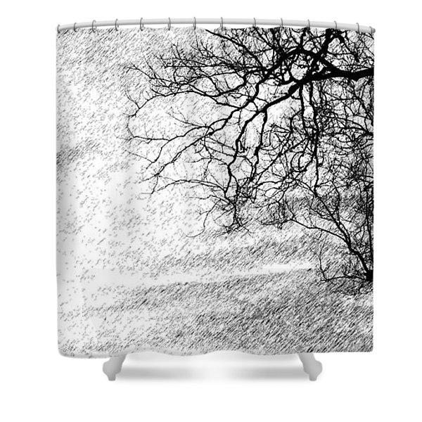 Black Rain Shower Curtain by Ed Smith