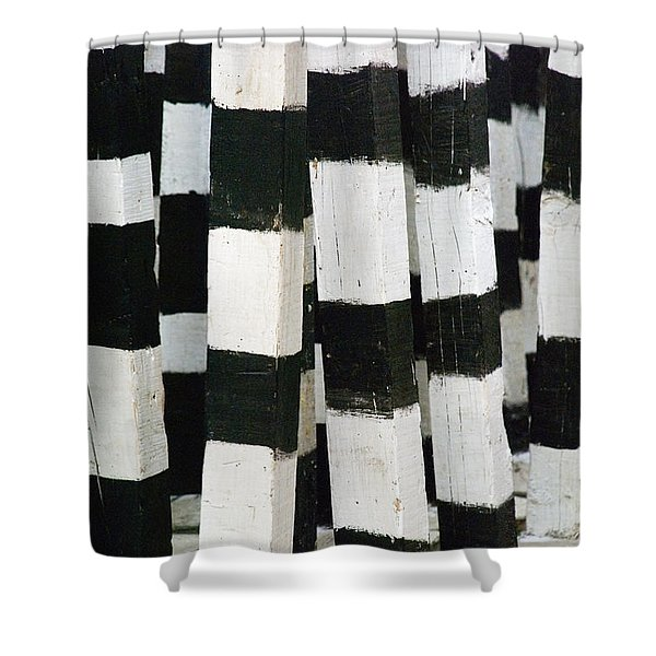 Blanco Y Negro Shower Curtain by Skip Hunt