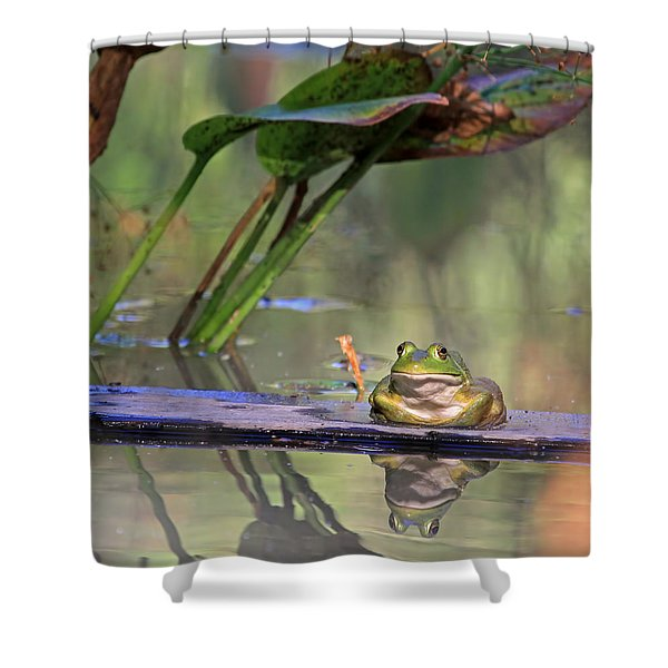Boardwalk Shower Curtain by Donna Kennedy
