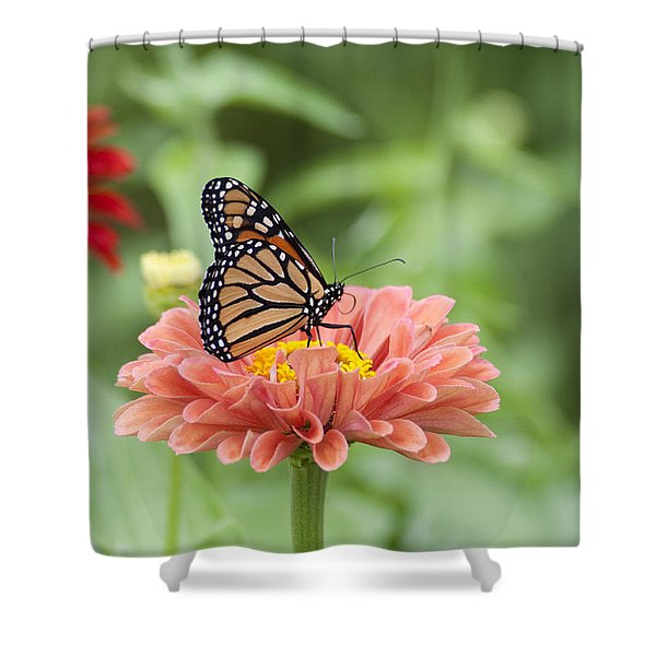 Butterflies and Blossoms Shower Curtain by Bill Cannon