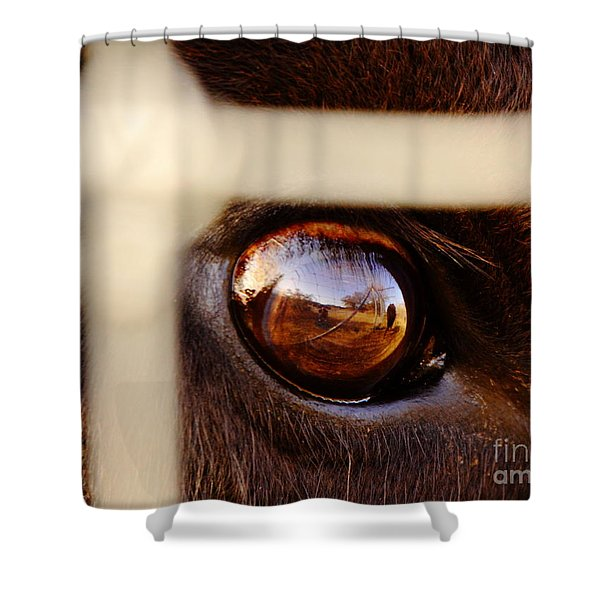 Caged Buffalo Reflects Shower Curtain by Robert Frederick