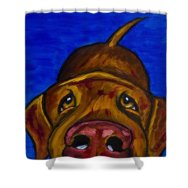 Chocolate Lab Nose Shower Curtain by Roger Wedegis