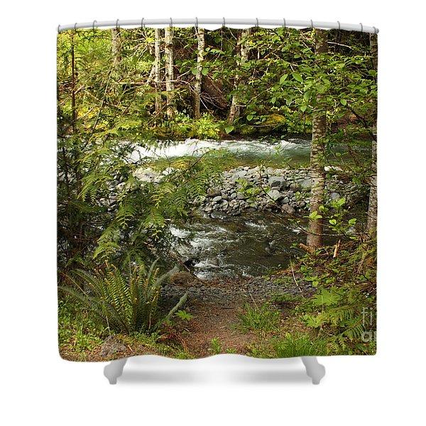 Clear Mountain Stream Shower Curtain by Carol Groenen