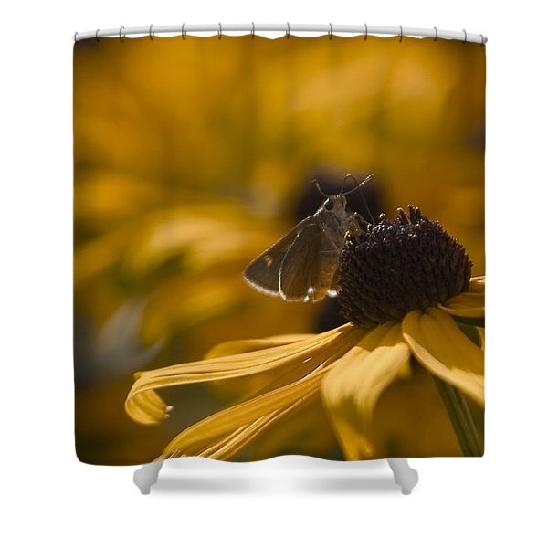 Closeup Shower Curtain by Karol  Livote