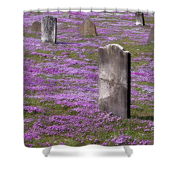 Colonial Tombstones Amidst Graveyard Phlox Shower Curtain by John Stephens