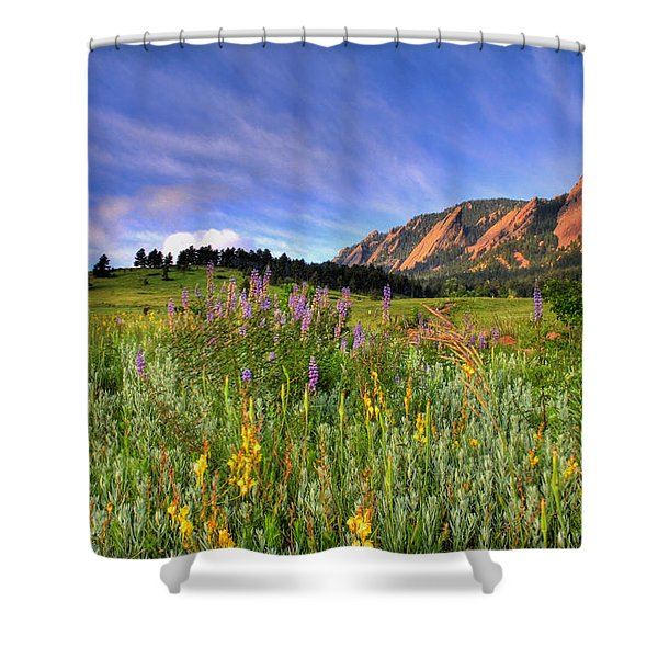 Colorado Wildflowers Shower Curtain by Scott Mahon