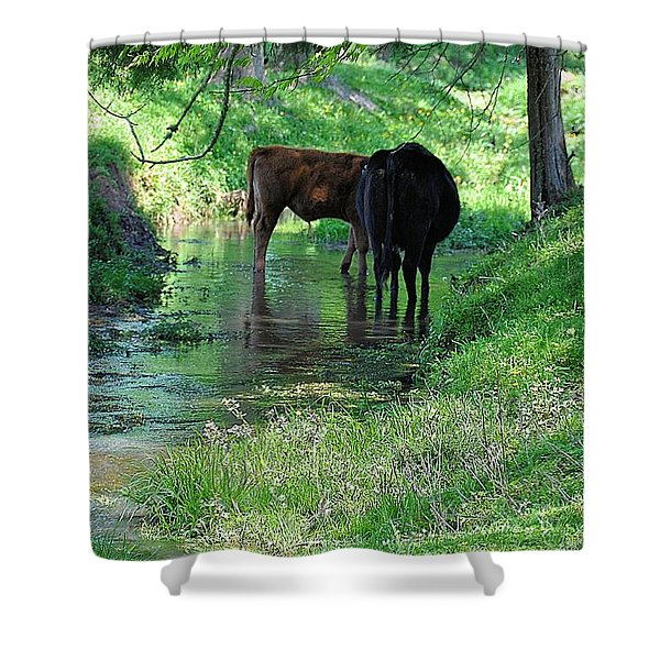 Cooling Spring Shower Curtain by Jan Amiss Photography